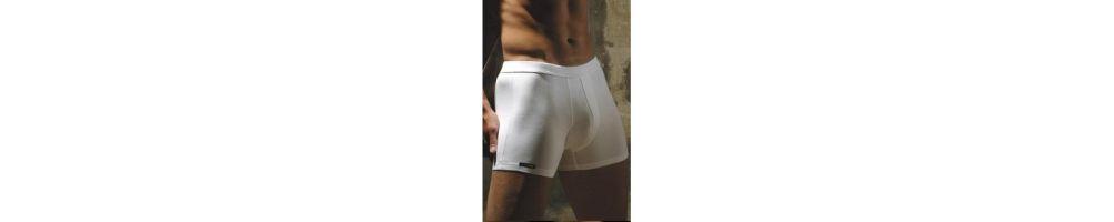 Boxer hlače